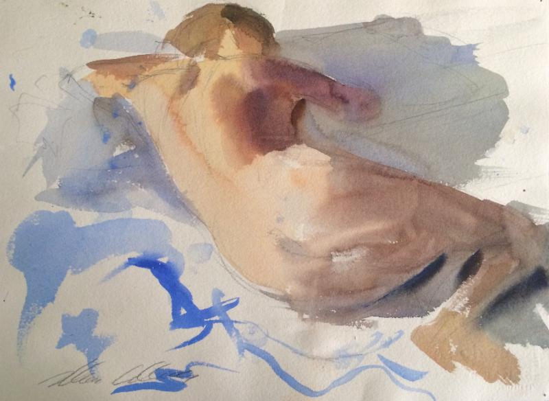 Marc Whitney Blue watercolor Nude 11 x 14